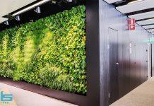 تجهیزات دیوار سبز