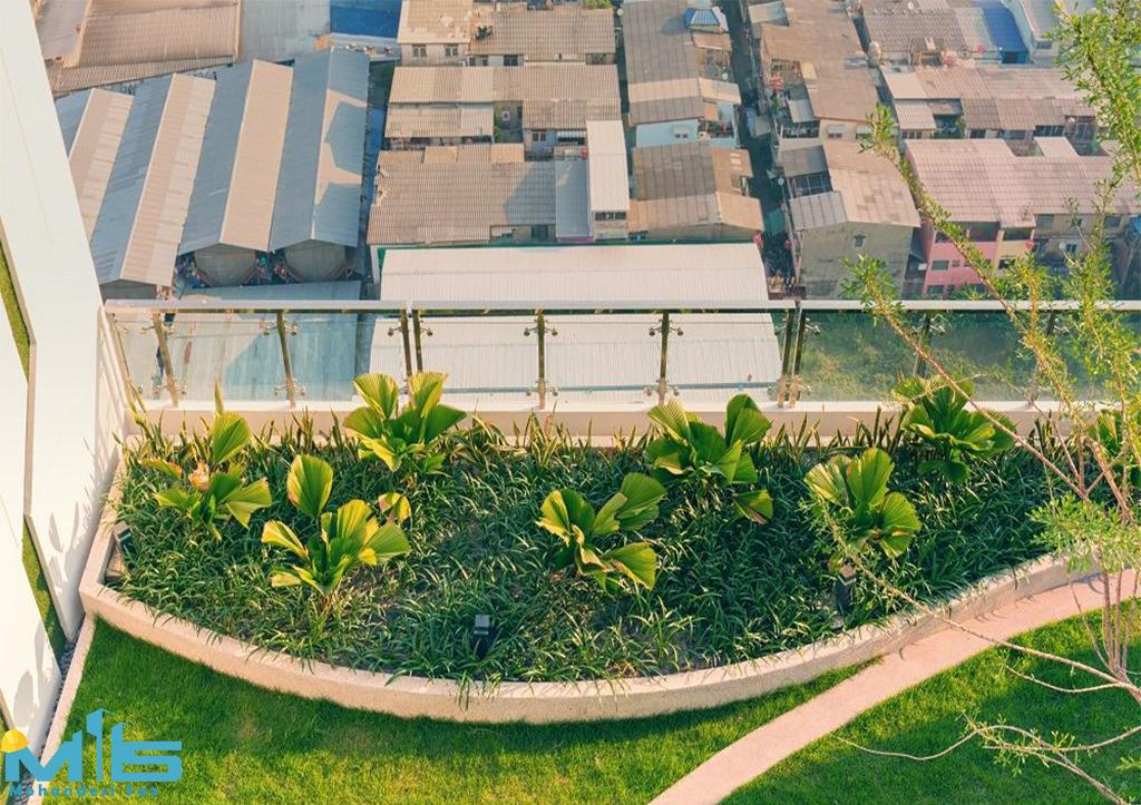 باغبانی بام سبز