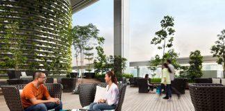 زیبایی تراس ها با فضای سبز